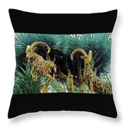 Flower Dome 28 Throw Pillow