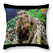 Flower Dome 41 Throw Pillow