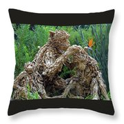 Flower Dome 42 Throw Pillow