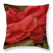 Flower Dusting Throw Pillow