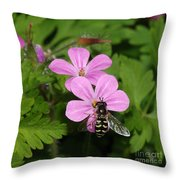 Flower Fly On Stinky Bob Throw Pillow
