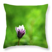 Flower Front Of Blur Background. Throw Pillow