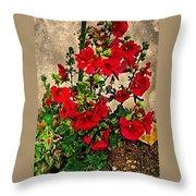 Flower Garden 11 Throw Pillow