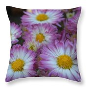 Flower Garden Throw Pillow by Garnett  Jaeger