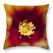 Flower Graphic Throw Pillow