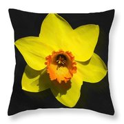 Flower - Id 16235-220251-6209 Throw Pillow