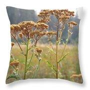Flower In Focus Throw Pillow