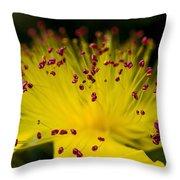 Flower In Macro Throw Pillow