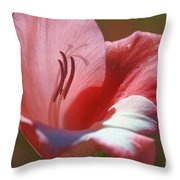 Flower In Pink Pastel Throw Pillow