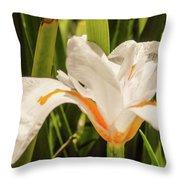 Flower In The Grass Throw Pillow