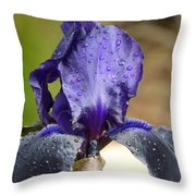 Flower In The Rain At Chelsea Throw Pillow