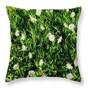 Flower Kissed Fields Throw Pillow