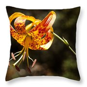 Flower Of Beauty Throw Pillow