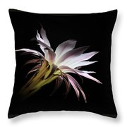 Flower Of Cactus Throw Pillow