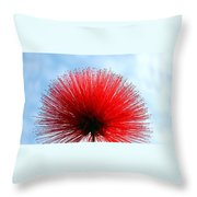 Flower Of Calliandra Haematocephala Throw Pillow