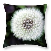 Flower Of Flash Throw Pillow