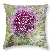 Flower Photograph Throw Pillow