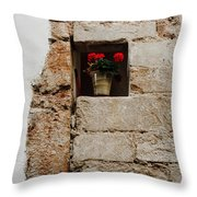 Flower Pot In Niche Throw Pillow
