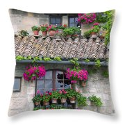 Flower Pots In Windows In Arles Throw Pillow by Carson Ganci