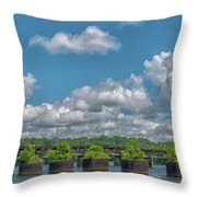 Flower Pots2 Throw Pillow