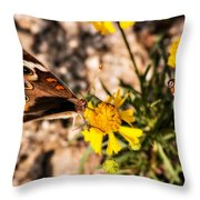 Flower Power Bug And Butterfly Throw Pillow
