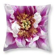 Flower Power In Pink Throw Pillow