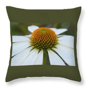 Flower Power Sacred Geometry Throw Pillow