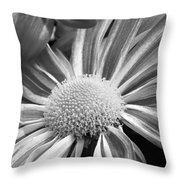 Flower Run Through It Black And White Throw Pillow