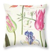 Flower Studies  Tulips And Blue Iris  Throw Pillow