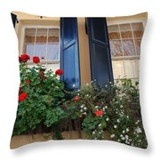 Flower Window In Charleston Sc Throw Pillow