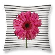 Flower With Lines Throw Pillow
