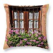 Flowered Window # II Throw Pillow