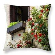 Flowered Window Throw Pillow