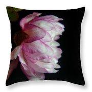 Flowering Almond 2011-11a Throw Pillow