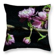 Flowering Almond 2011-16 Throw Pillow