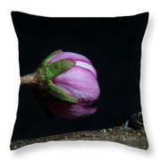 Flowering Almond 2011-20b Throw Pillow