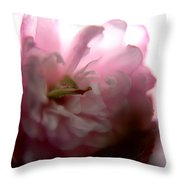 Flowering Almond 2011-7 Throw Pillow