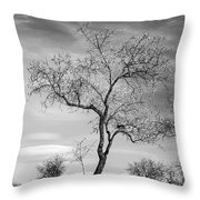Trees Are Talking To Us Throw Pillow