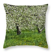 Flowering Apple Orchard Throw Pillow