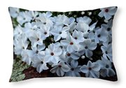 Flowering At 13,000 Feet Throw Pillow