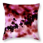Flowering Branch In Pink Throw Pillow