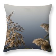 Flowering Cane Plant Throw Pillow