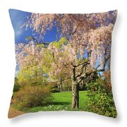 Flowering Cherry In Botanic Garden Throw Pillow