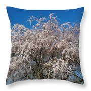 Flowering Cherry  Throw Pillow