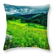 Flowering Colorado Mountain Meadow Throw Pillow