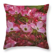 Flowering Dogwood Flowers 01 Throw Pillow