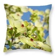 Flowering Dogwood Tree Art Print White Dogwood Flowers Blue Sky Art Throw Pillow