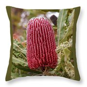 Flowering In Red Throw Pillow