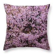 Flowering Pink In Spring Throw Pillow