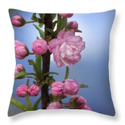 Flowering Pink On Blue Throw Pillow